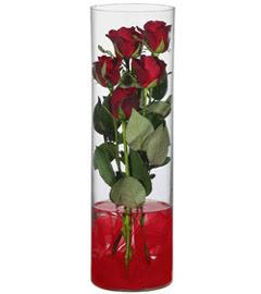 cam içerisinde 7 adet kirmizi gül  Kırşehir çiçek siparişi sitesi