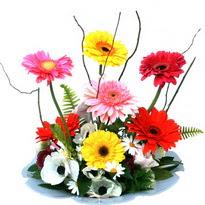 Kırşehir çiçek , çiçekçi , çiçekçilik  camda gerbera ve mis kokulu kir çiçekleri