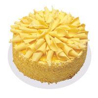 Muzlu pasta 4 ile 6 kisilik yas pasta  Kırşehir çiçek yolla