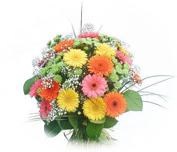 13 adet gerbera çiçegi buketi  Kırşehir internetten çiçek siparişi