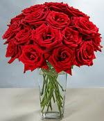 Kırşehir hediye çiçek yolla  Sevdiklerinize özel ürün 12 adet cam içerisinde kirmizi gül  Kırşehir çiçek , çiçekçi , çiçekçilik