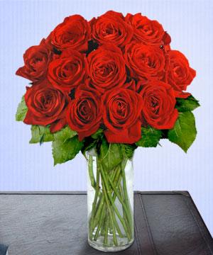 Anneme 12 adet cam içerisinde kirmizi gül  Kırşehir hediye çiçek yolla