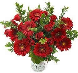 5 adet kirmizi gül 5 adet gerbera aranjmani  Kırşehir çiçek , çiçekçi , çiçekçilik