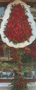 Kırşehir çiçek yolla , çiçek gönder , çiçekçi   dügün açilis çiçekleri  Kırşehir kaliteli taze ve ucuz çiçekler
