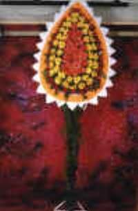 Kırşehir çiçek gönderme  dügün açilis çiçekleri  Kırşehir çiçekçi telefonları
