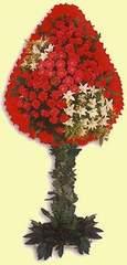 Kırşehir çiçek gönderme sitemiz güvenlidir  dügün açilis çiçekleri  Kırşehir anneler günü çiçek yolla
