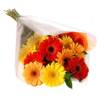 Karisik renklerde gerbera buketi  Kırşehir online çiçek gönderme sipariş