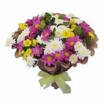 Kırşehir çiçek yolla  Mevsim kir çiçegi demeti