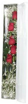 Kırşehir hediye çiçek yolla   5 adet gülden kutu güller