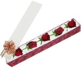 Kırşehir çiçekçi mağazası  kutu içerisinde 5 adet kirmizi gül