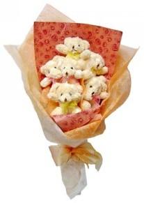 12 adet ayiciktan buket  Kırşehir hediye çiçek yolla
