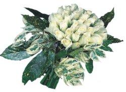 Kırşehir internetten çiçek satışı  9 Beyaz gül Özel kisiler için