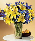Kırşehir uluslararası çiçek gönderme  Lilyum ve mevsim  çiçegi özel
