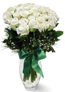 19 adet essiz kalitede beyaz gül  Kırşehir çiçek siparişi sitesi