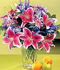 Kırşehir çiçek online çiçek siparişi  Sevgi bahçesi Özel  bir tercih
