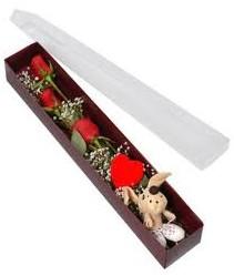 kutu içerisinde 3 adet gül ve oyuncak  Kırşehir online çiçek gönderme sipariş