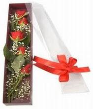 kutu içinde 5 adet kirmizi gül  Kırşehir internetten çiçek satışı
