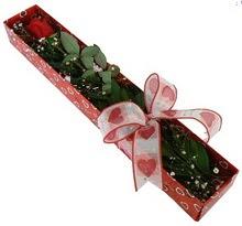Tek kirmizi gül kutu içerisinde  Kırşehir çiçek mağazası , çiçekçi adresleri