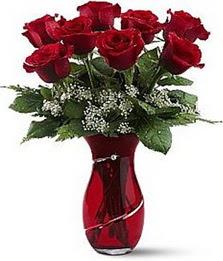 Vazo içinde 8 adet kirmizilar içinde güller  Kırşehir internetten çiçek satışı