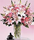 Kırşehir yurtiçi ve yurtdışı çiçek siparişi  Kazablanka biçme vazoda