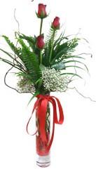 Kırşehir hediye çiçek yolla  3 adet kirmizi gül vazo içerisinde
