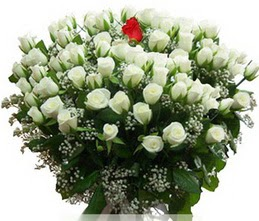 Kırşehir çiçekçi mağazası  100 adet beyaz 1 adet kirmizi gül buketi
