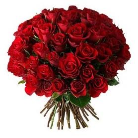 Kırşehir çiçekçi telefonları  33 adet kırmızı gül buketi