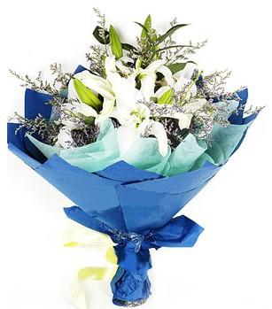 Kırşehir uluslararası çiçek gönderme  4 adet dal kazablankadan görsel buket