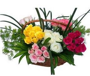 Kırşehir çiçek satışı  35 adet rengarenk güllerden sepet tanzimi