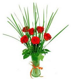 Kırşehir çiçekçi telefonları  6 adet kırmızı güllerden vazo çiçeği