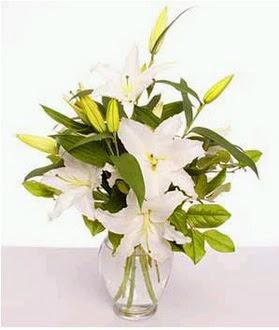 Kırşehir çiçek gönderme sitemiz güvenlidir  2 dal cazablanca vazo çiçeği