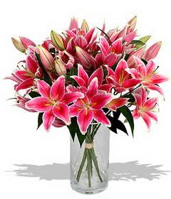 4 dal cazablanca görsel vazosu  Kırşehir ucuz çiçek gönder