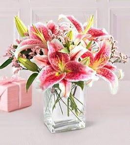 2 dal kazablanka görsel vazosu  Kırşehir hediye çiçek yolla