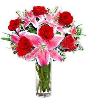 Kırşehir İnternetten çiçek siparişi  1 dal cazablanca ve 6 kırmızı gül çiçeği