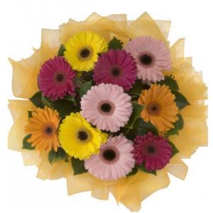 Kırşehir online çiçekçi , çiçek siparişi  11 adet karışık gerbera çiçeği buketi