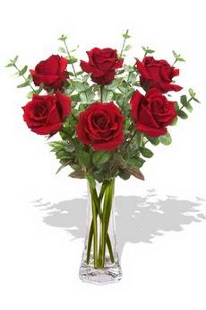 Kırşehir ucuz çiçek gönder  6 kırmızı gül vazosu