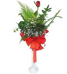 Kırşehir uluslararası çiçek gönderme  Cam vazoda masum tek gül
