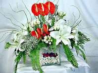 Kırşehir çiçek online çiçek siparişi  Anthurim Kazablanka  gül