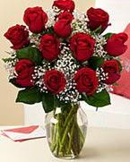 Sevgilime hediye 9 adet 1.ci kalite gül  Kırşehir uluslararası çiçek gönderme