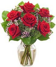 Kız arkadaşıma hediye 6 kırmızı gül  Kırşehir internetten çiçek satışı
