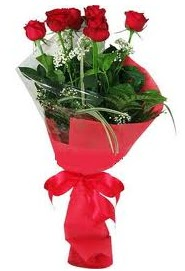 Çiçek yolla sitesinden 7 adet kırmızı gül  Kırşehir çiçekçi mağazası