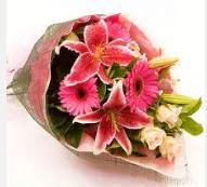 1 dal kazablanka ve mevsim çiçekleri  Kırşehir internetten çiçek satışı