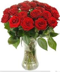 Kırşehir çiçek online çiçek siparişi  Vazoda 15 adet kırmızı gül tanzimi