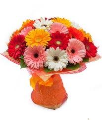Renkli gerbera buketi  Kırşehir uluslararası çiçek gönderme
