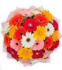 15 adet renkli gerbera buketi  Kırşehir kaliteli taze ve ucuz çiçekler