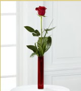 Vazo içerisinde 1 adet kırmızı gül  Kırşehir internetten çiçek satışı