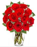 12 adet vazoda kıpkırmızı gül  Kırşehir çiçek siparişi vermek