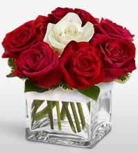 Tek aşkımsın çiçeği 8 kırmızı 1 beyaz gül  Kırşehir cicek , cicekci