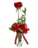 vazo içerisinde 1 adet kırmızı gül  Kırşehir çiçek yolla