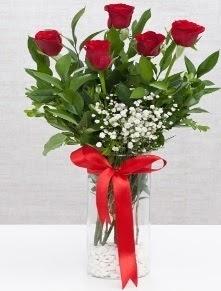 cam vazo içerisinde 5 adet kırmızı gül  Kırşehir online çiçek gönderme sipariş